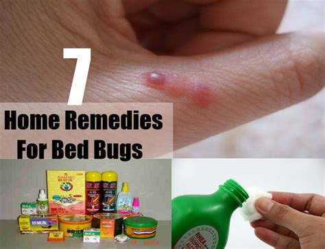 Bed Cure by 7 Home Remedies For Bed Bugs Treatments Cures