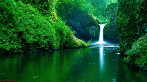 3d Nature Wallpapers by Nature Pics Wallpapers Wallpaper Cave