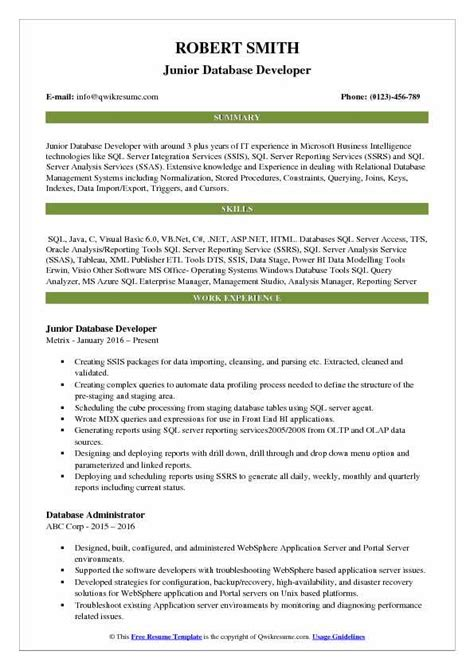 Resume Sles Pdf by Bi Publisher Developer Resume The Best Developer Images