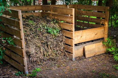 Backyard Composting by Backyard Gardening Compost Black Gold For Your Garden