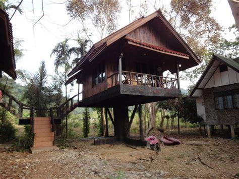 tree hut  bamboo house photo