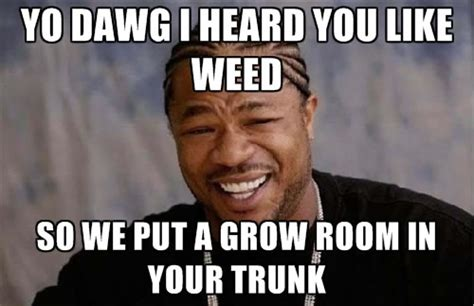 Pimp My Ride Meme - pimp my ride xzibit grow room weed memes