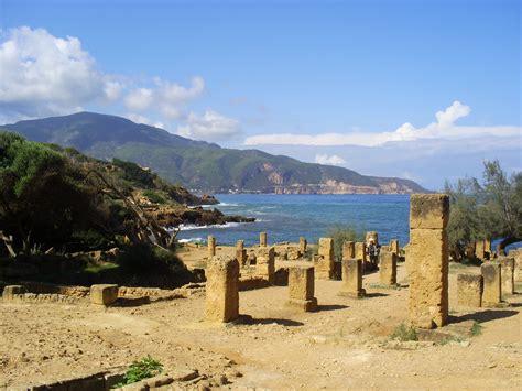les chambres de commerce et d industrie tipaza algérie