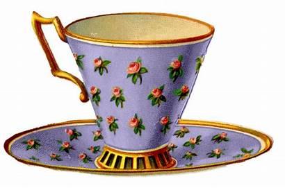 Teacups Roses Pretty Teacup Rose Flowers Fairy