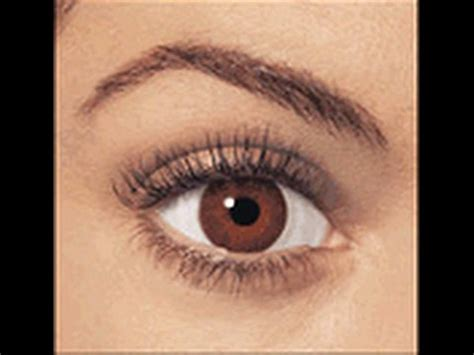 brown eye colors change your eye color to brown with hypnosis