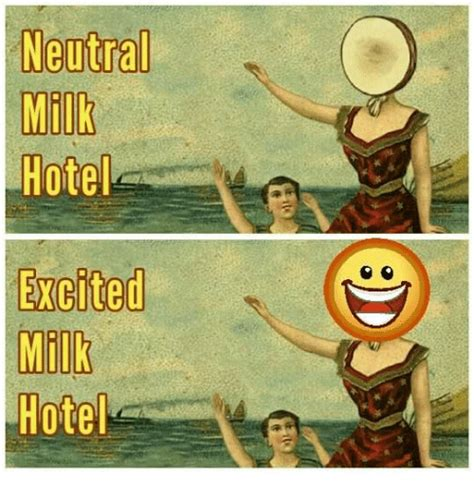 Hotel Memes - funny neutral milk hotel memes of 2016 on sizzle