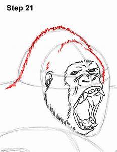 How To Draw A Gorilla Agressive Stance