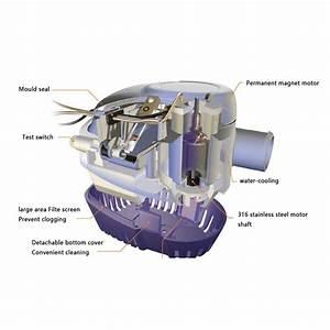 12v 1100gph Bilge Water Pump Submersible Float Switch