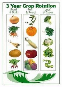 Crop Rotation Chart