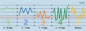 Fieber Ohne Erkältung : diagnosehilfe f nf typische fieberverl ufe test stiftung warentest ~ Frokenaadalensverden.com Haus und Dekorationen