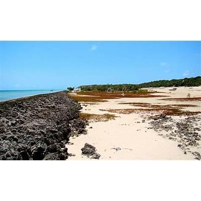 Bazaruto Island - Wikipedia