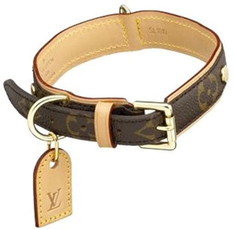 designer collars leashes items n tiny