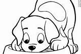 Hound Coloring Dog Bassett Bing Patterns Basset Sheets Stencil Adults Puppy Colouring Dogs sketch template