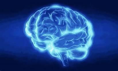 Brain Gifs Child Cerebro Tumor Brains Children