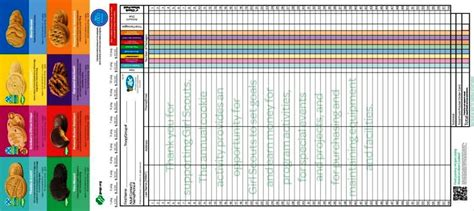 girl scout order form template sampletemplatess
