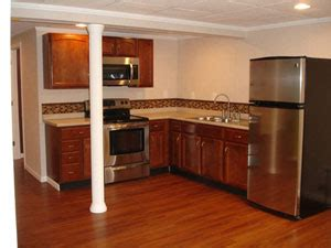 basement kitchen design basement in apartments ideas designs total 1496