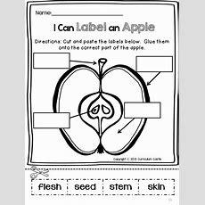 437 Best September Images On Pinterest  Apples, Preschool