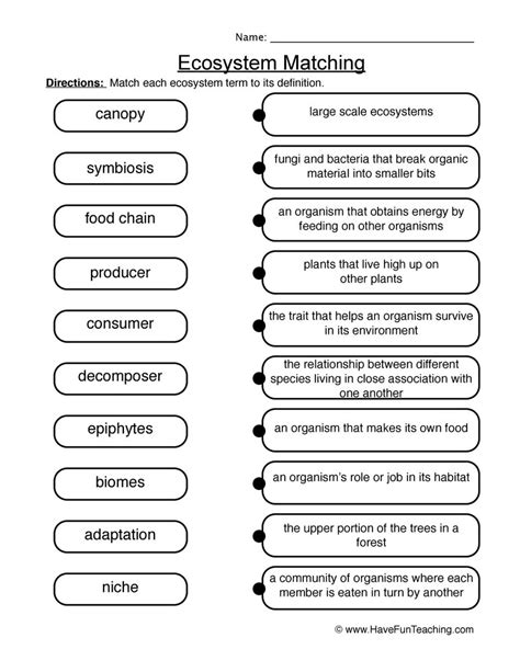 science environments worksheets resources