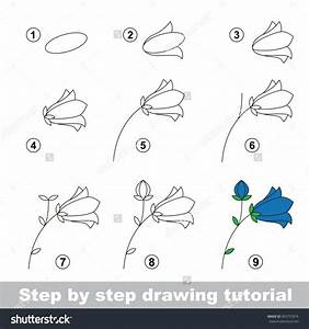 Flower Drawing Step By Step - Drawing Pencil