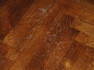 floor design on the eye how to refinish wood floors by