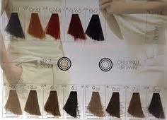 Age Perfect Hair Colour Chart Keune So Pure Color Shade Chart Hair Pinterest