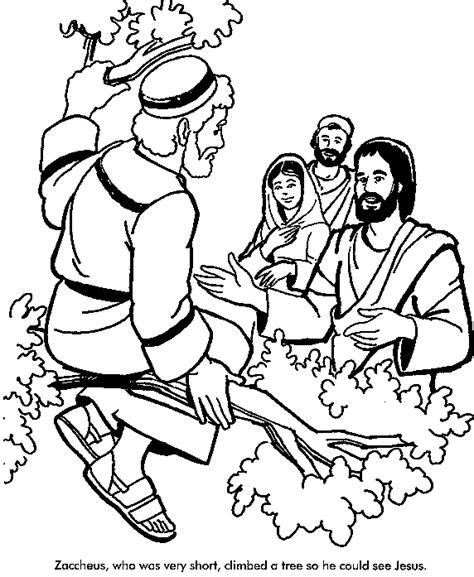 pin  kim barr  vbs  submerged zacchaeus bible