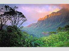 Atardecer en la selva 1680x1050 Fondos de pantalla y