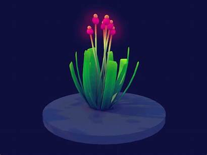 Plant Dance Animated Flowers Giphy Gifs Animation