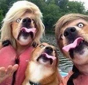 1000+ images about WTF (Face) Swaps on Pinterest   Face ...