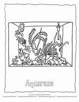 Aquarium Coloring Pages Marine Popular Printable Library Clipart Books Coloringhome Line sketch template