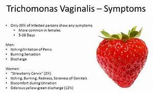 Trichomoniasis During Pregnancy - Anatomy