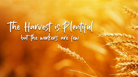 The Harvest is Plentiful but the Workers are Few ...