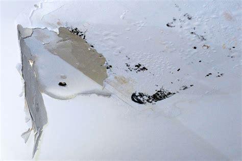 Wasserschaden Schnell Handeln by In Davos Wir Beheben Wasserschaden Und Machen Leckortung