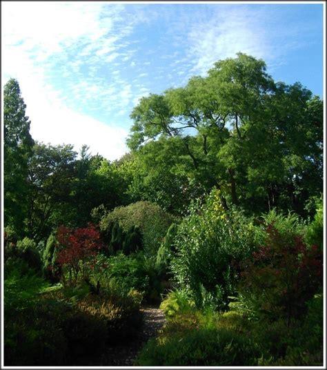 Botanischer Garten Duisburgkaiserberg  Foto Vom 21