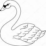 Swan Lake Drawing Coloring Printable Colouring Ballet Clipartmag Adult sketch template