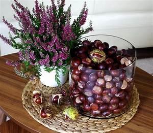 Herbst Tischdeko Natur : tischdeko f r herbst selbstgemacht und modern arrangiert ~ Bigdaddyawards.com Haus und Dekorationen