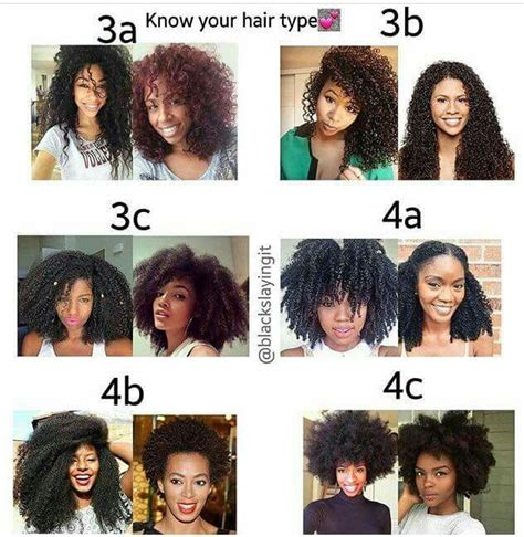 Types Of Hair by Hair Types 3c 4a Hair Cheveux Afro Cheveux