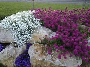 la rocaille et la decoration des jardins et terrasses With tapis chambre bébé avec caron fleurs de rocaille