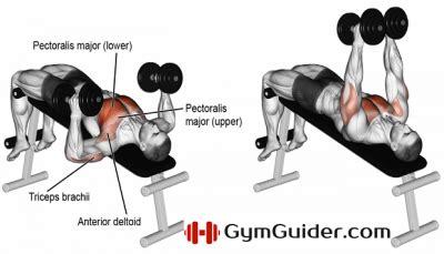 Decline Bench Grip Triceps Press chest guider