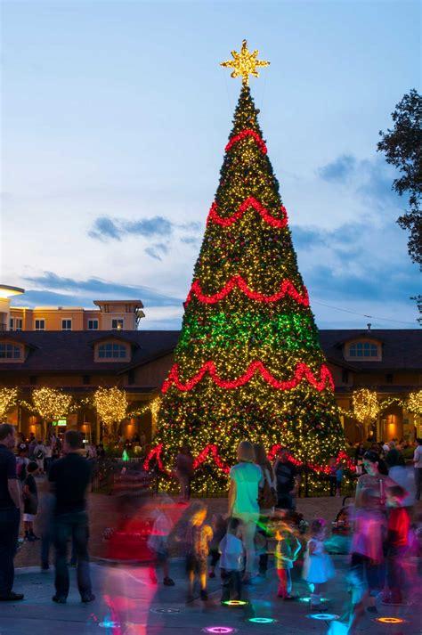 christmas tree lighting set for nov 21 houston chronicle