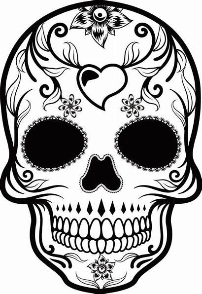 Skull Calavera Dead Catrina Mexican Sugar Muertos