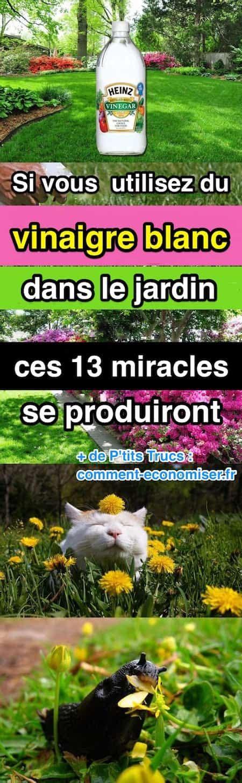 peut on mettre du vinaigre blanc dans le lave linge si vous utilisez du vinaigre blanc dans le jardin ces 13 miracles se produiront