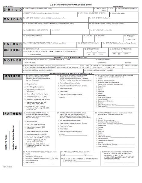 birth certificate templates word  template lab