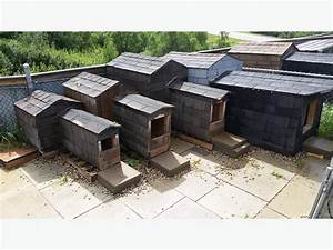 And up 4 fully insulated and shingled dog houses for sale for Insulated dog house for sale