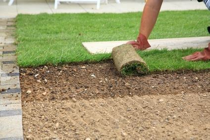 lawn laying cost sod turf vs artificial grass cost and care comparison lawns for you