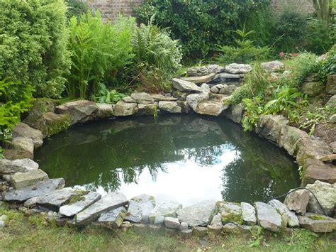 pond cleaning carpvale north yorkshire s finest
