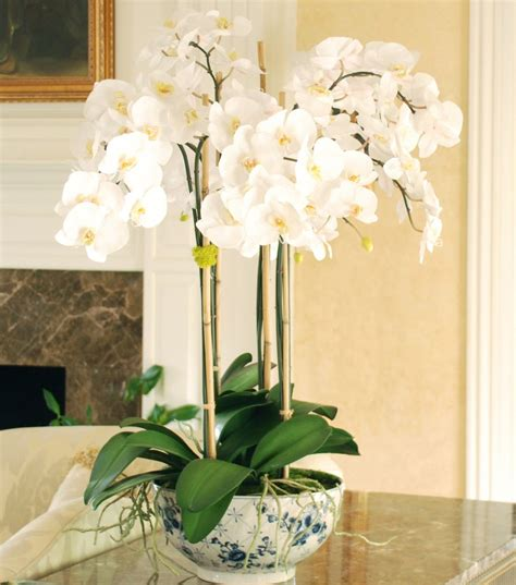 large white dining table luxury artificial luxury orchid pot plant amaranthine blooms