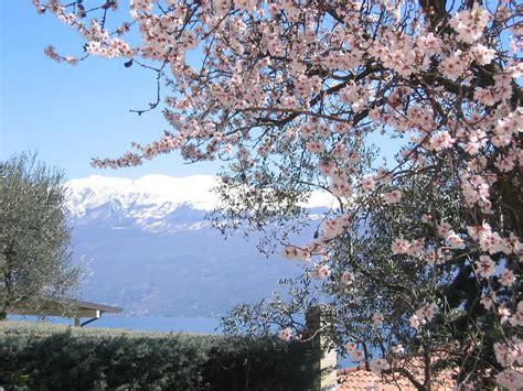 Im Frühjahr by Ferienhaus Casa Gardasee Gardasee Familie Ceccarelli