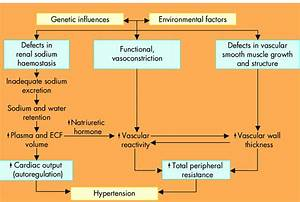 The Pathophysiology Of Primary Hypertension  A