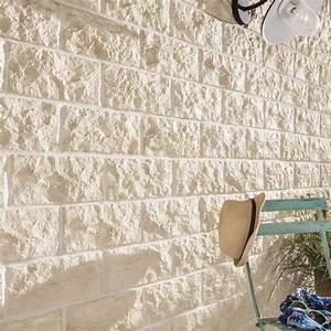 Plaquette De Parement Exterieur : mur pierre parement beton accueil design et mobilier ~ Dailycaller-alerts.com Idées de Décoration